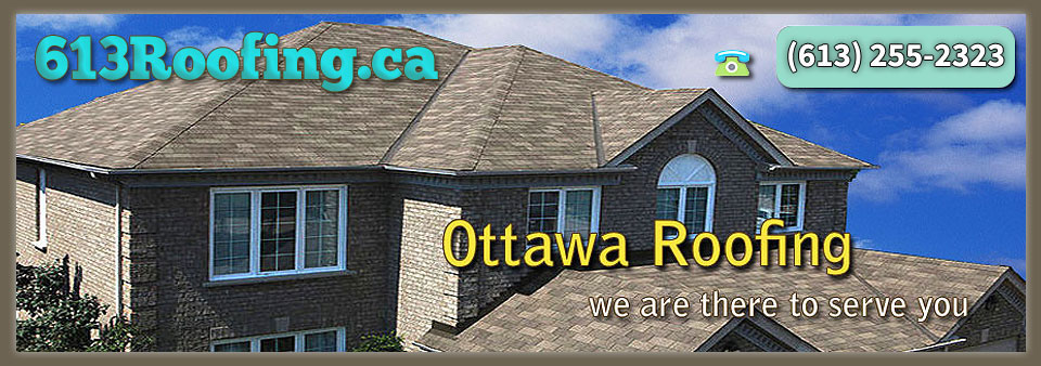 Local Ottawa Roofers, Roofing Contractors And Companies Offering ...